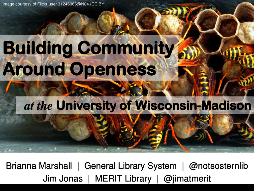 Building Community Around Openness at the Unive...