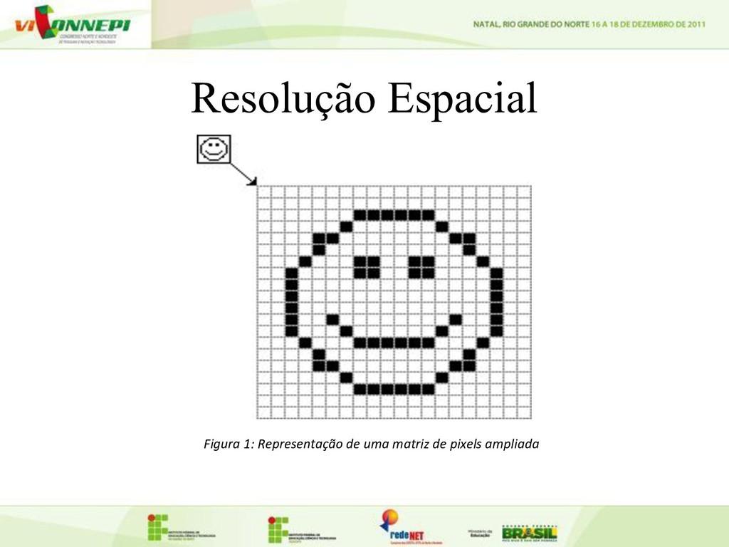 Resolução Espacial Figura 1: Representação de u...