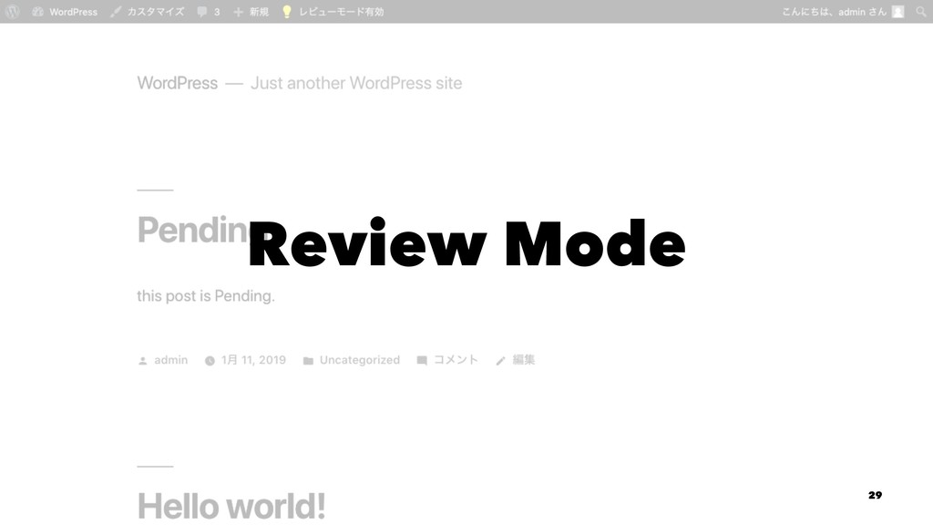 Review Mode 29