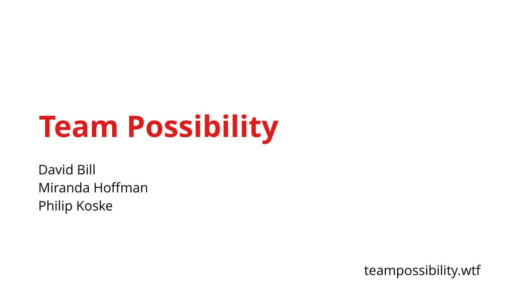 Team Possibility David Bill Miranda Hoffman Phil...