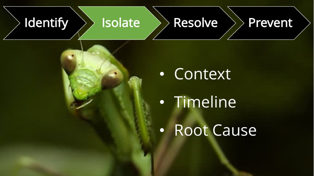 • Context • Timeline • Root Cause Identify Isol...