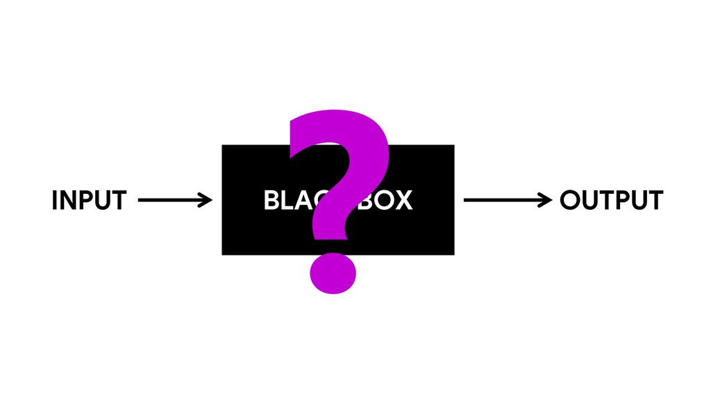 BLACK BOX INPUT OUTPUT