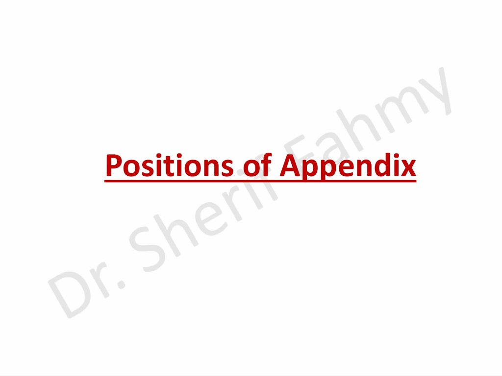 Positions of Appendix