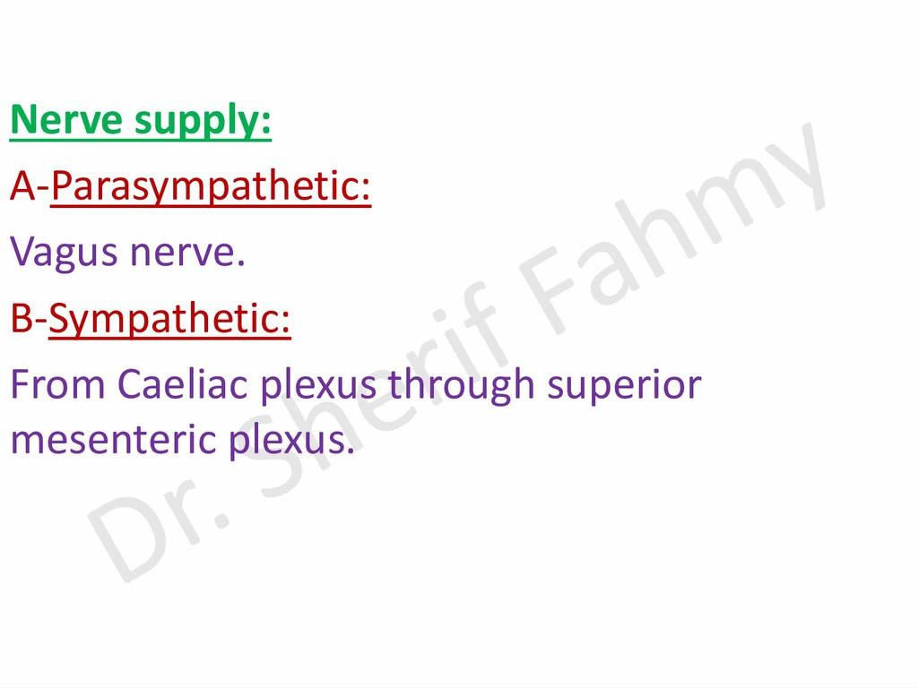Nerve supply: A-Parasympathetic: Vagus nerve. B...