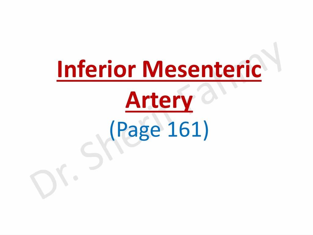 Inferior Mesenteric Artery (Page 161)