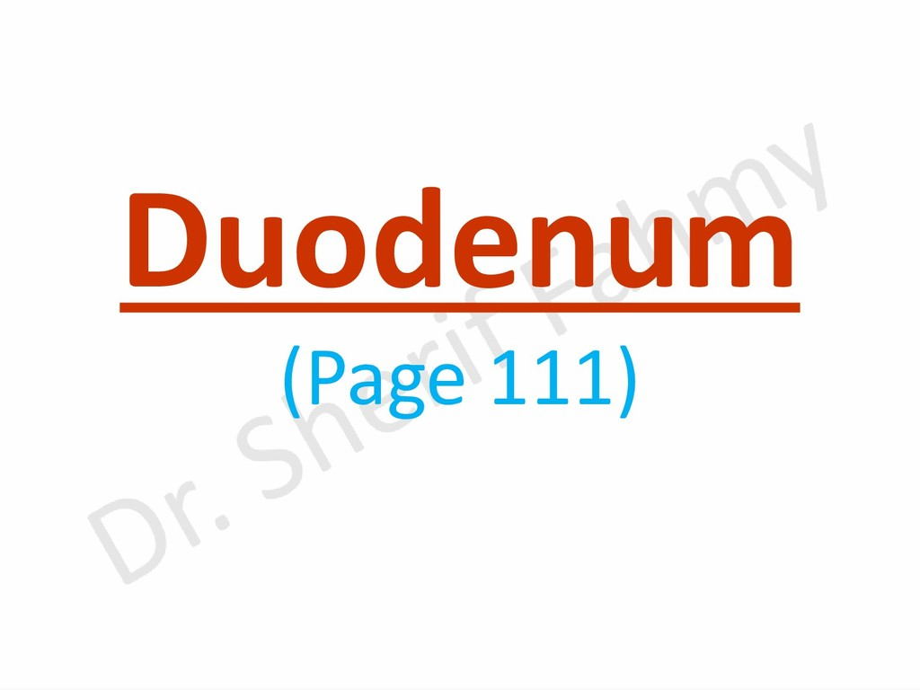 Duodenum (Page 111)