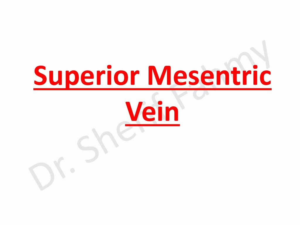 Superior Mesentric Vein