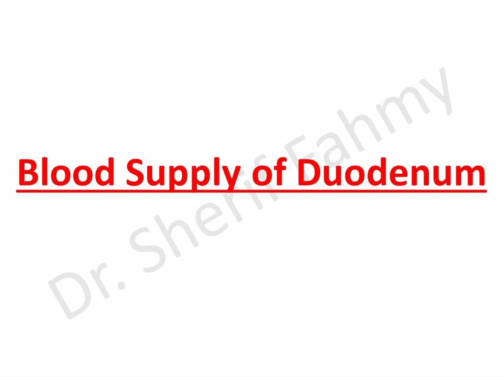 Blood Supply of Duodenum