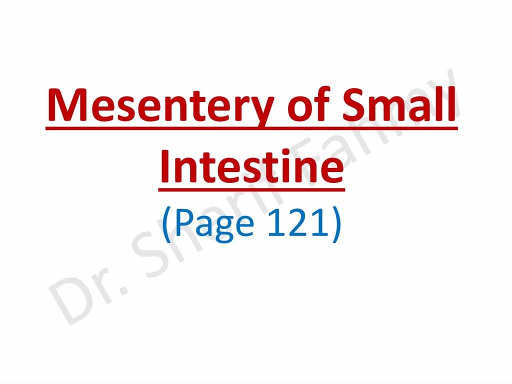 Mesentery of Small Intestine (Page 121)