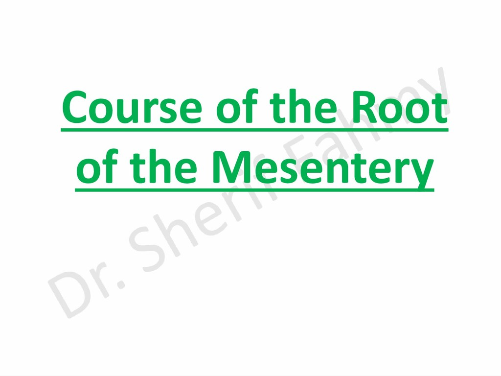 Course of the Root of the Mesentery