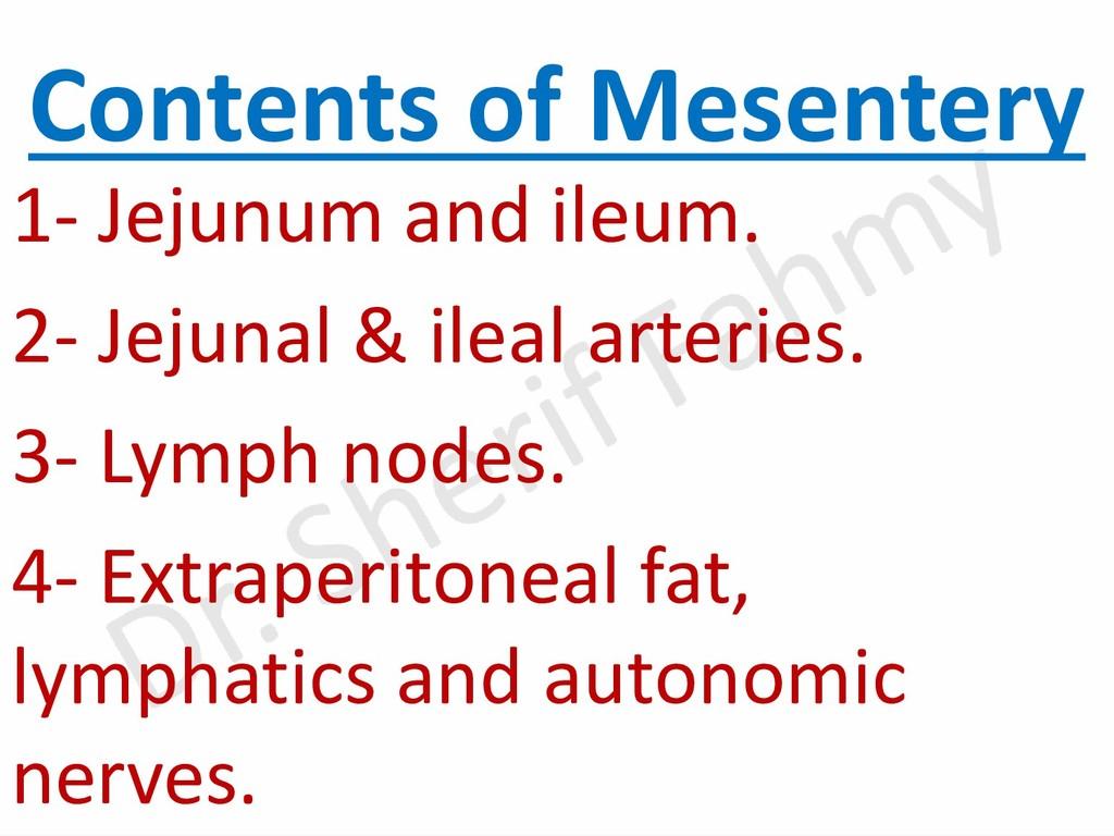 Contents of Mesentery 1- Jejunum and ileum. 2- ...