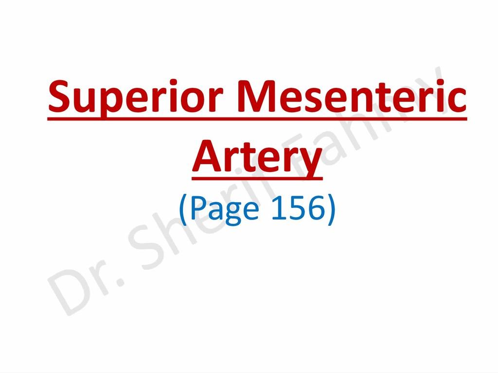 Superior Mesenteric Artery (Page 156)