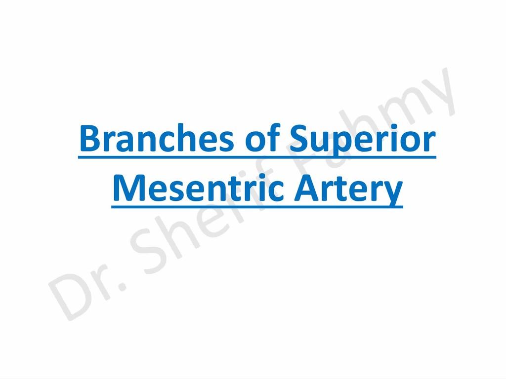 Branches of Superior Mesentric Artery