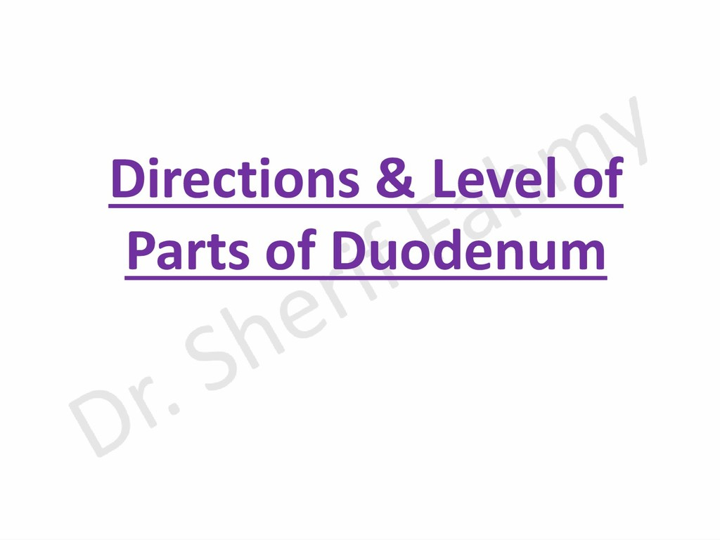 Directions & Level of Parts of Duodenum