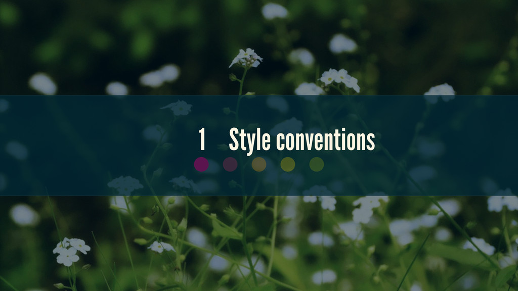 1 Style conventions