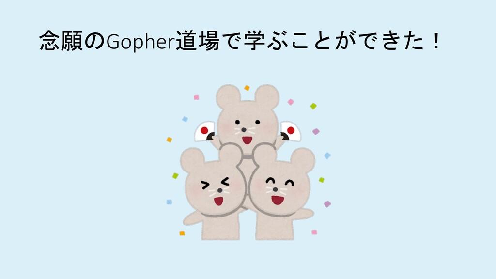 念願のGopher道場で学ぶことができた!