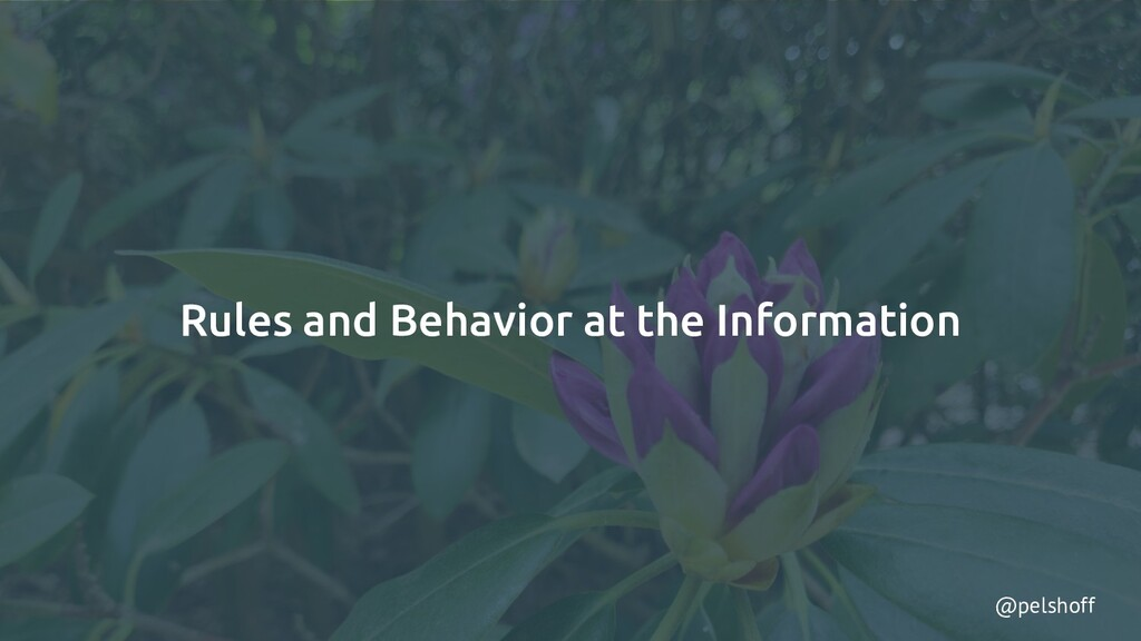 @pelshoff Rules and Behavior at the Information