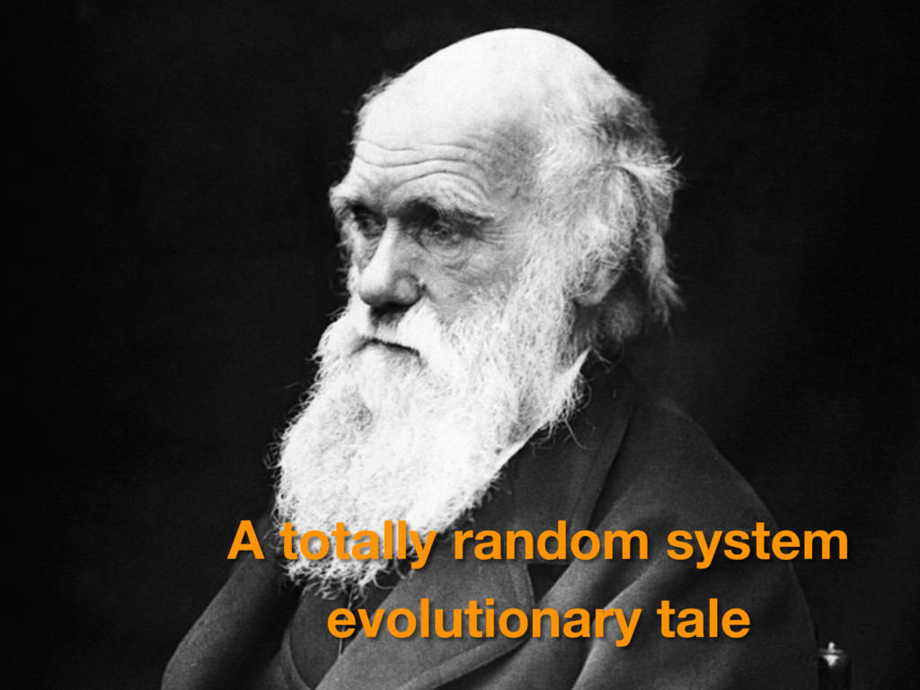 A totally random system evolutionary tale