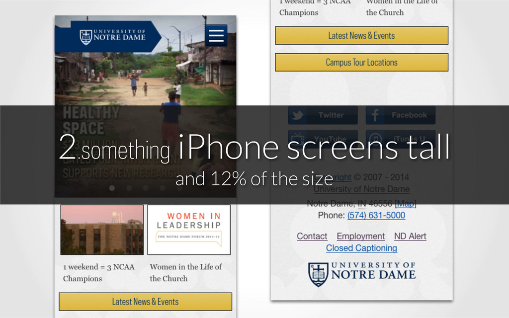 2.something iPhone screens tall and 12% of the...