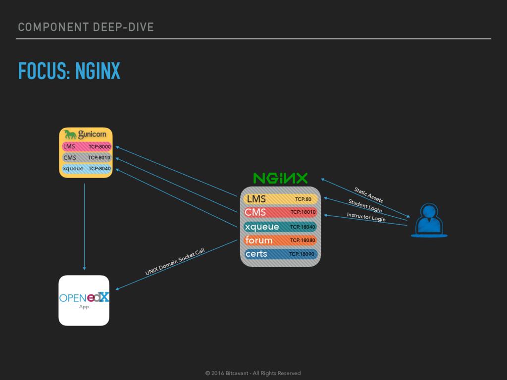 COMPONENT DEEP-DIVE FOCUS: NGINX App LMS TCP:80...