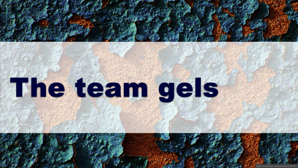 The team gels https://www.flickr.com/photos/pss...