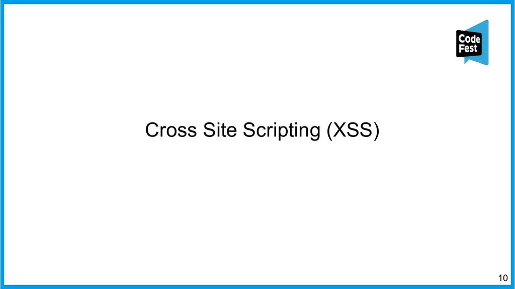 Cross Site Scripting (XSS) 10
