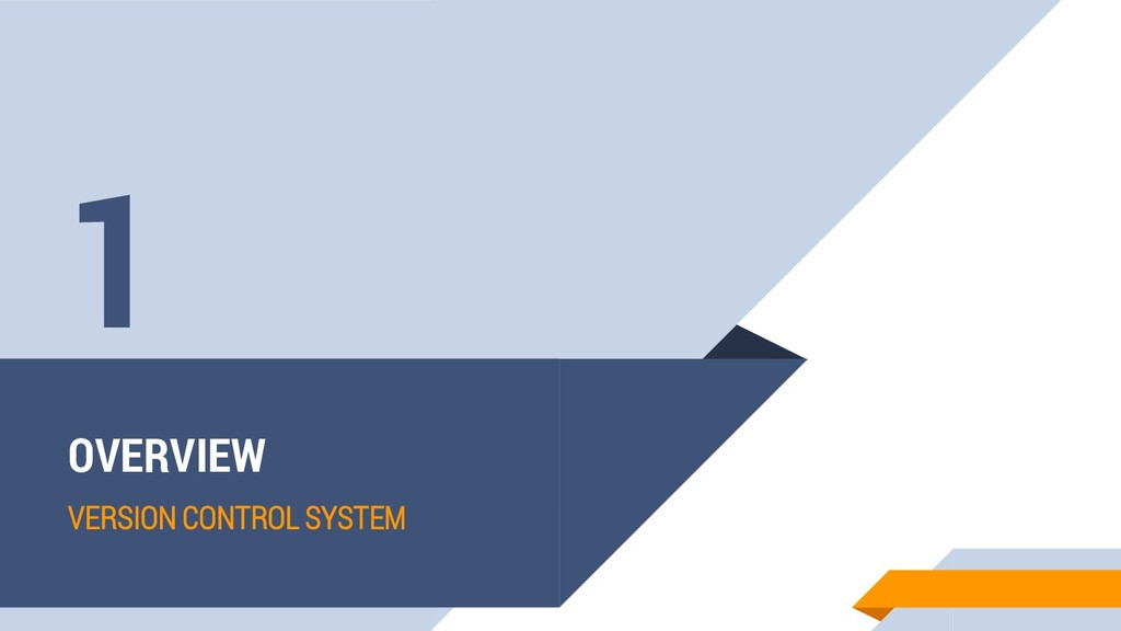 OVERVIEW VERSION CONTROL SYSTEM 1