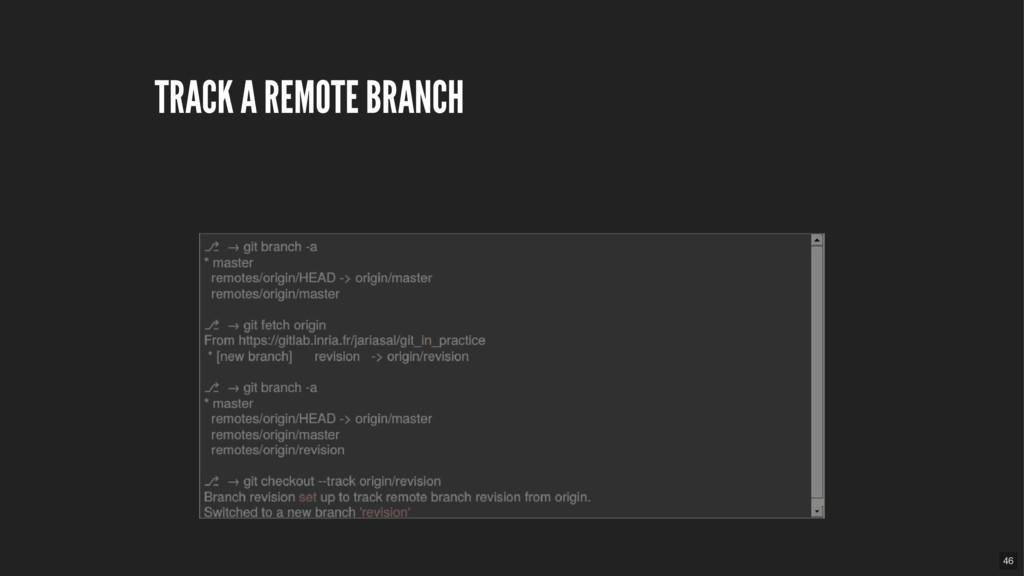 TRACK A REMOTE BRANCH 46