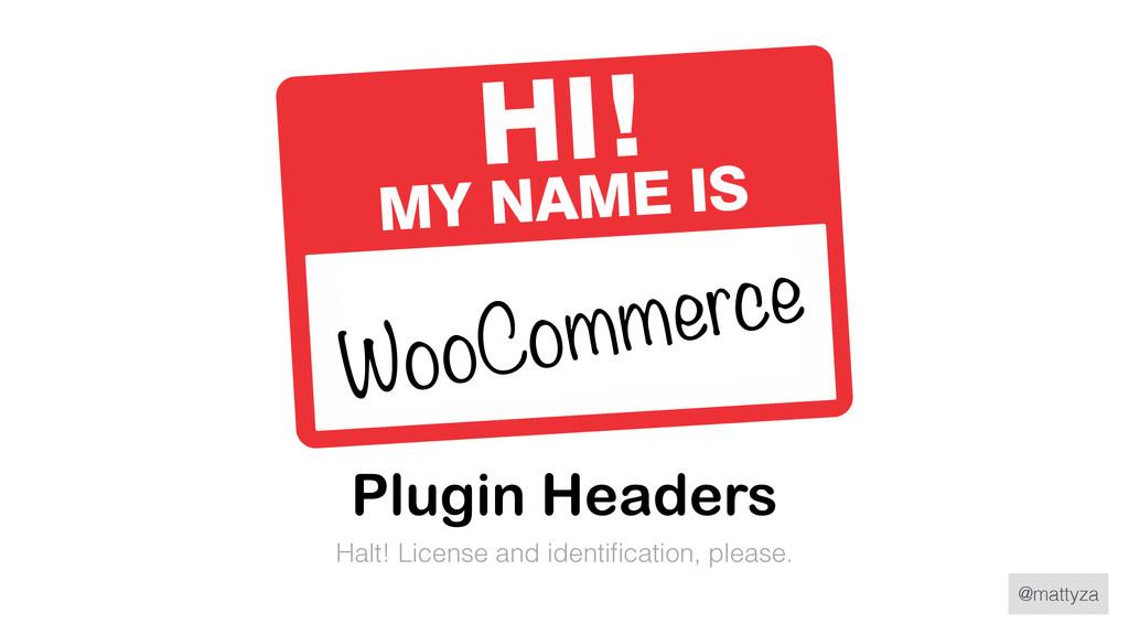 @mattyza Plugin Headers Halt! License and ident...