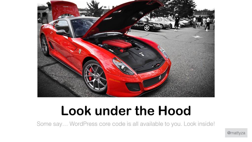 @mattyza Look under the Hood Some say… WordPres...