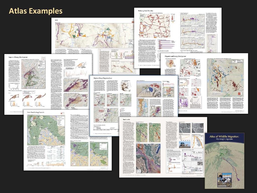 Atlas Examples