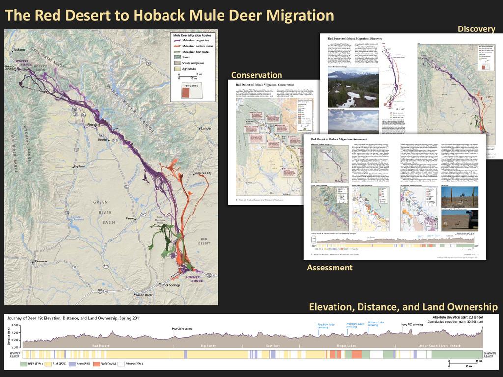 The Red Desert to Hoback Mule Deer Migration Di...
