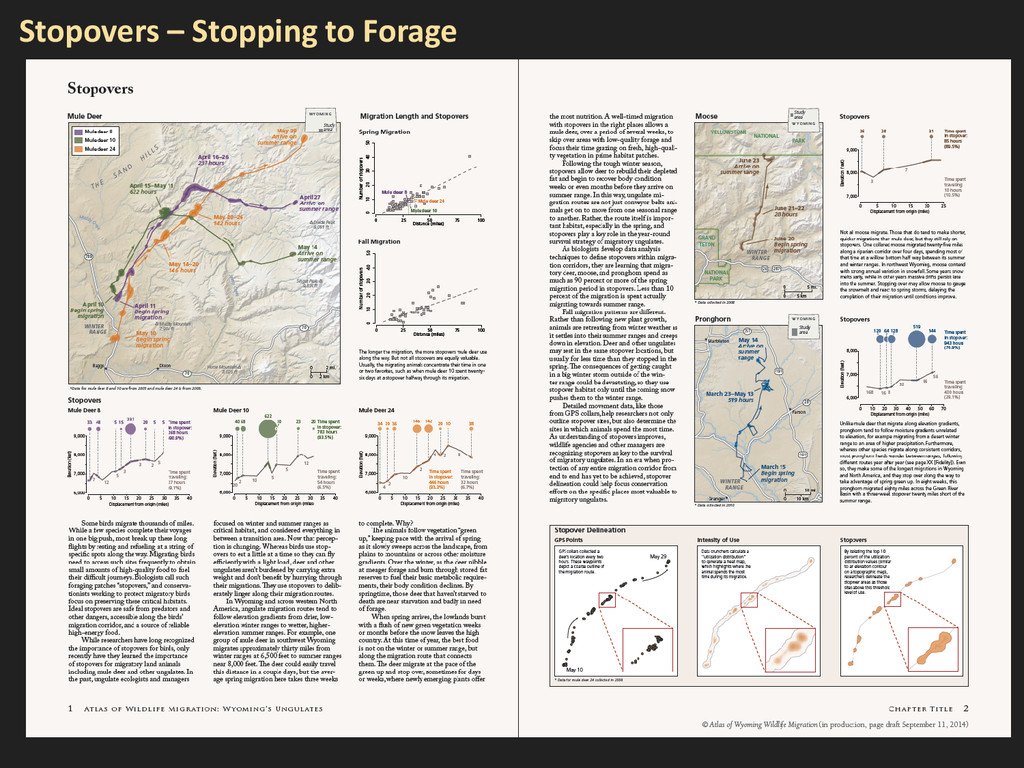 Stopovers – Stopping to Forage