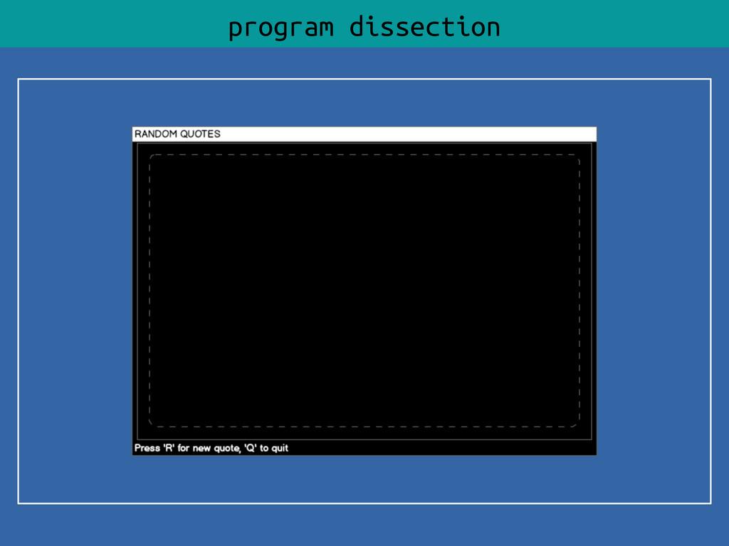 program dissection