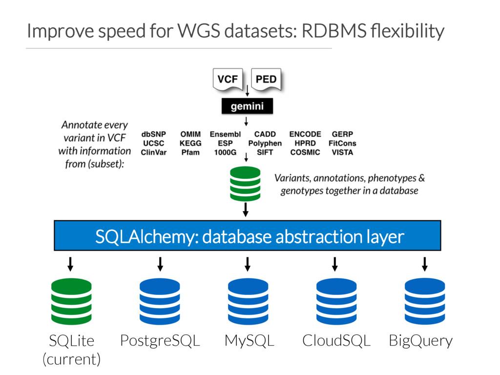 Improve speed for WGS datasets: RDBMS flexibilit...