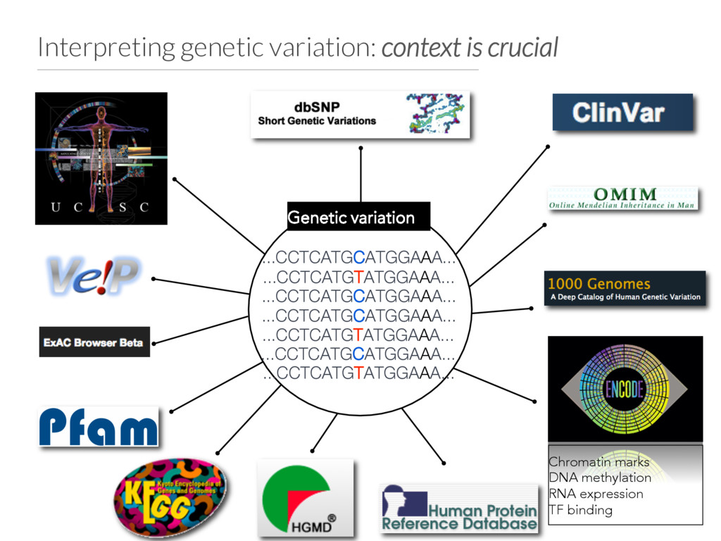 Interpreting genetic variation: context is cruc...