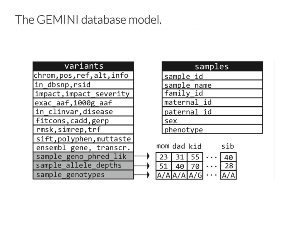 The GEMINI database model.