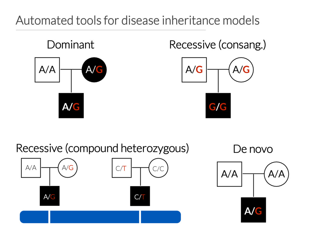 Automated tools for disease inheritance models