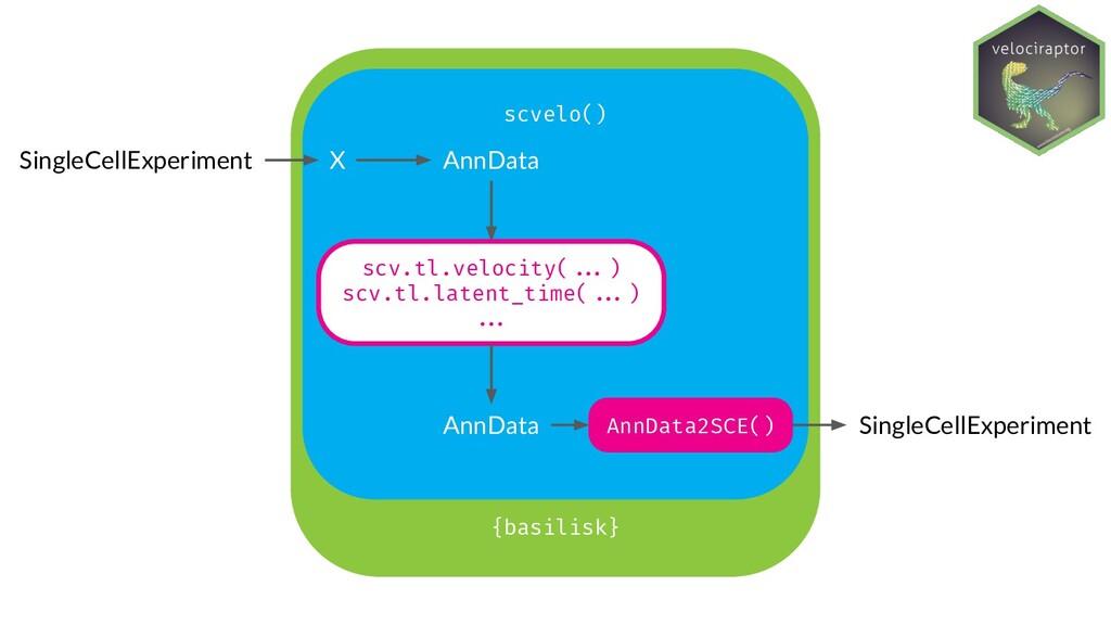 {basilisk} SingleCellExperiment scvelo() AnnDat...