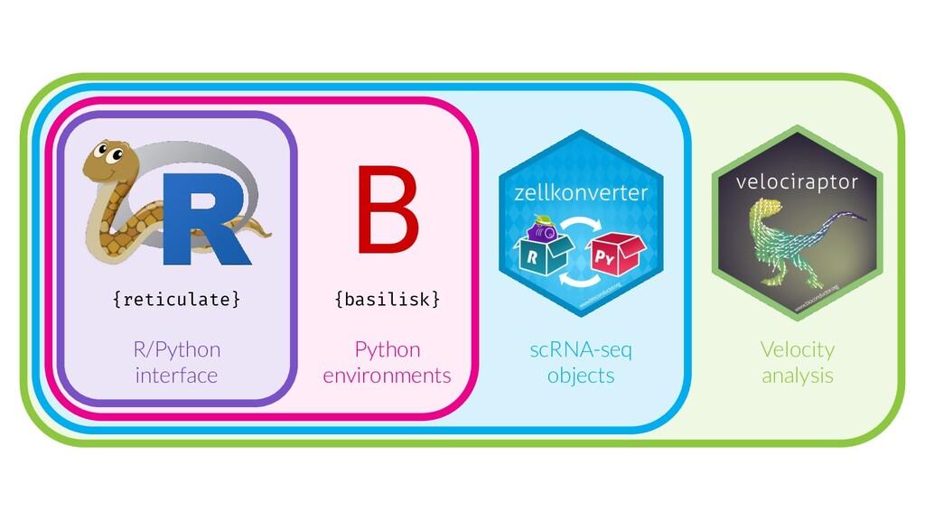 {reticulate} {basilisk} B Python environments R...