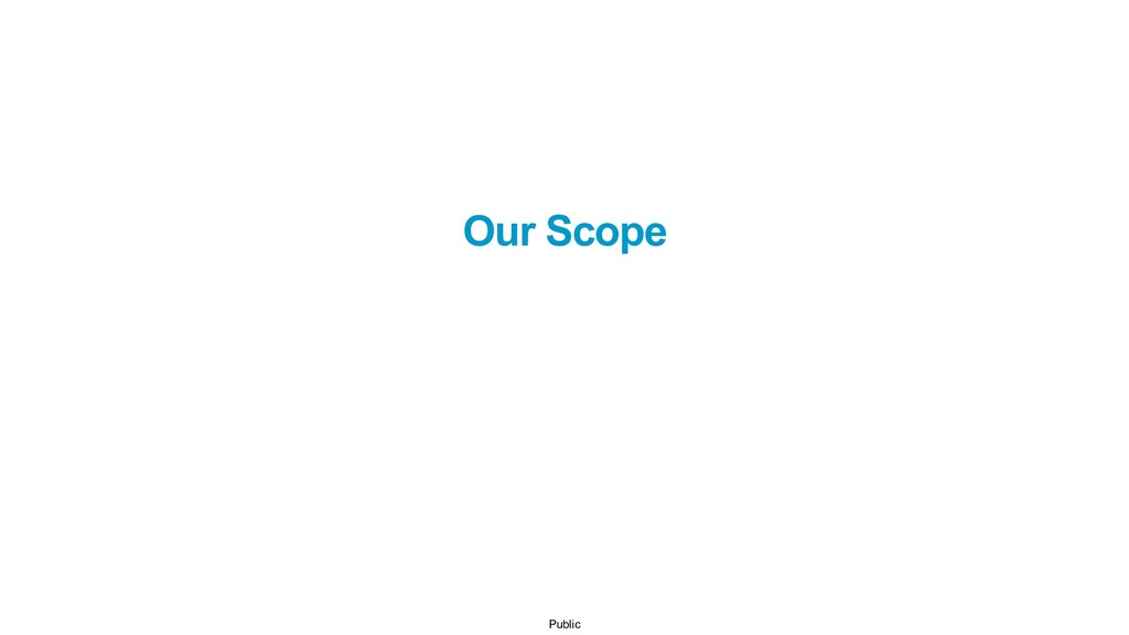 Public Our Scope