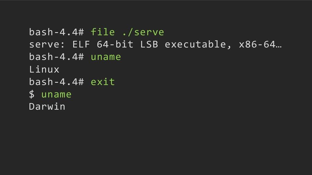 bash-4.4# file ./serve serve: ELF 64-bit LSB ex...