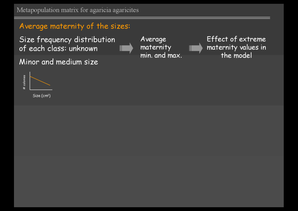 Average maternity of the sizes: Size frequency ...