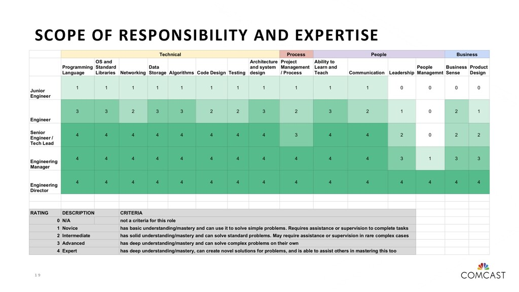 1 9 SCOPE OF RESPONSIBILITY AND EXPERTISE