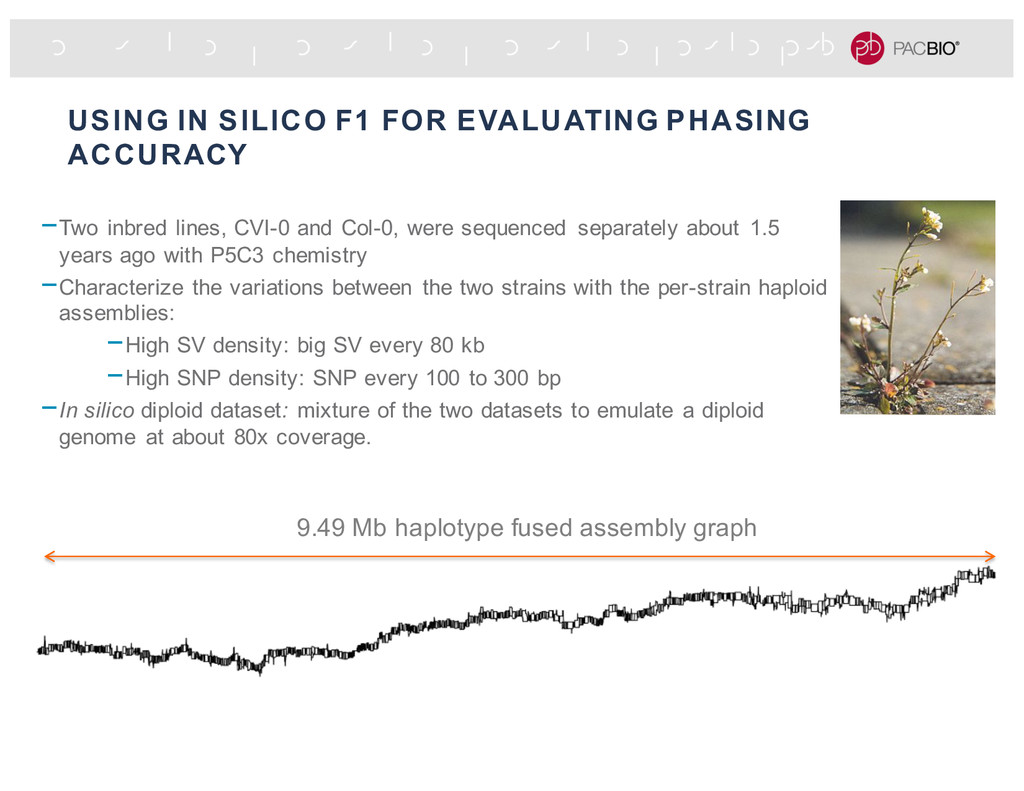 USING IN SILICO F1 FOR EVALUATING PHASING ACCUR...