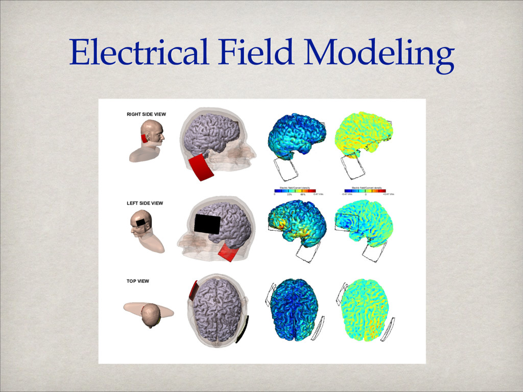 Electrical Field Modeling 0 0.41 V/m Electric f...