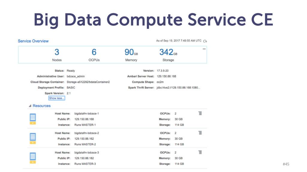 Big Data Compute Service CE munz & more #45