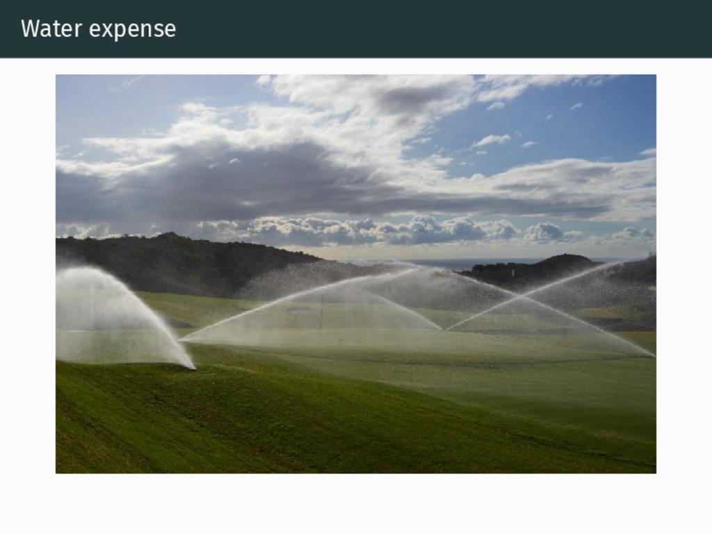 Water expense