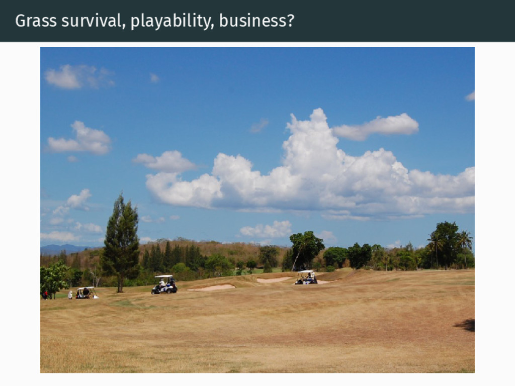 Grass survival, playability, business?