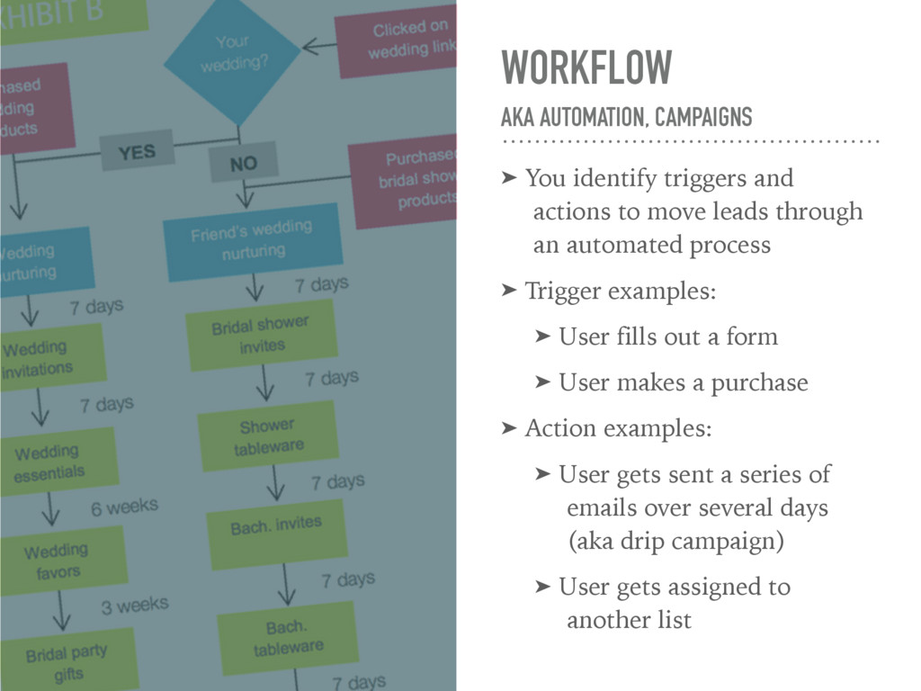 WORKFLOW AKA AUTOMATION, CAMPAIGNS ➤ You ident...